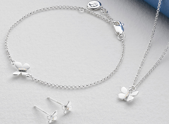 Silver Butterfly Gift Set