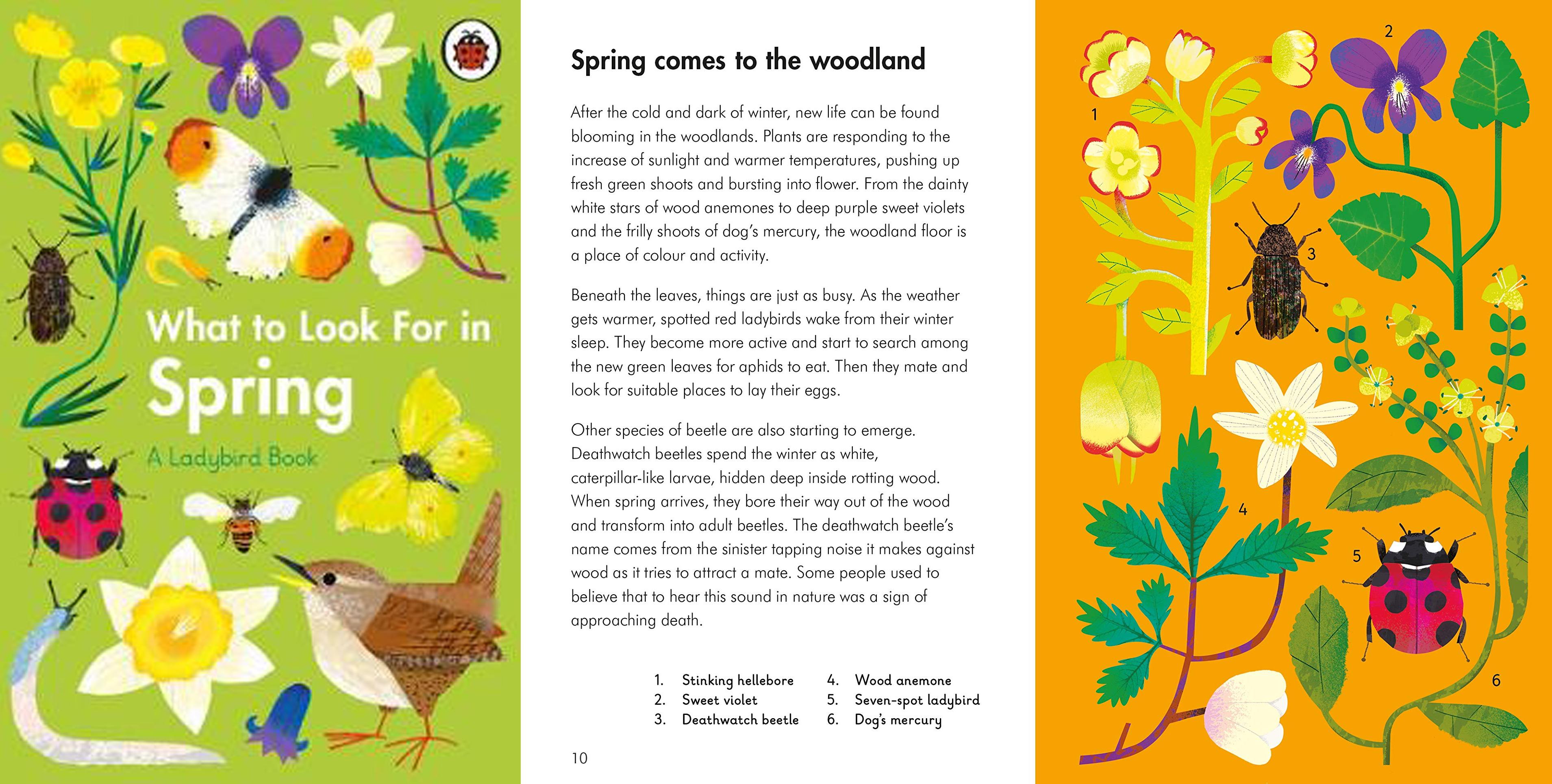 The Best Spring Books for Children in 2021